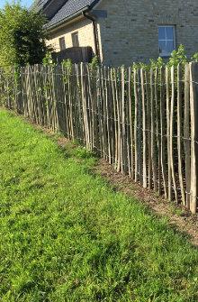 clôtures en bois châtaignier