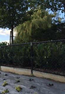 exemple fil de clôture